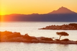 Zon en strandvakantie in Chalkidiki. Halfpension incl. vluchten