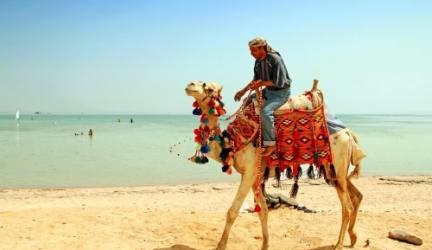 Genieten van een all-in luxe 4* WINTERZON vakantie in het aangename EGYPTE